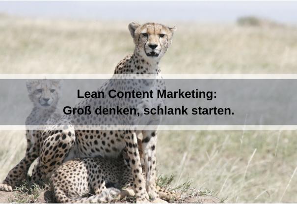 Grundlagen von Lean Content Marketing - groß denken, schlank starten (carolehenderson / pixabay)